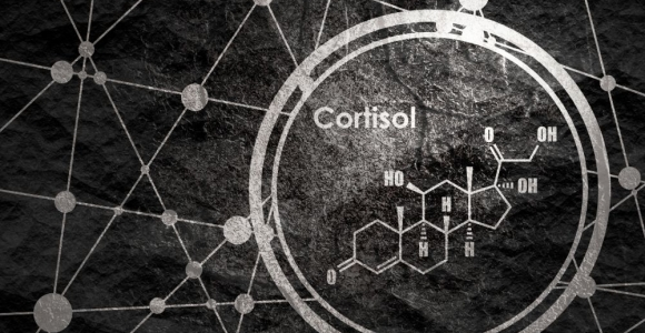 How Natural Cortisol Impacts Your Body