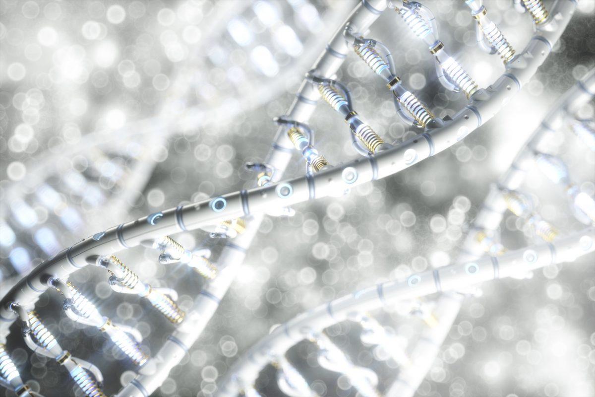 Genetic Alleles Variant