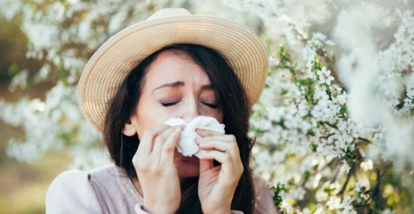 All About Antihistamines
