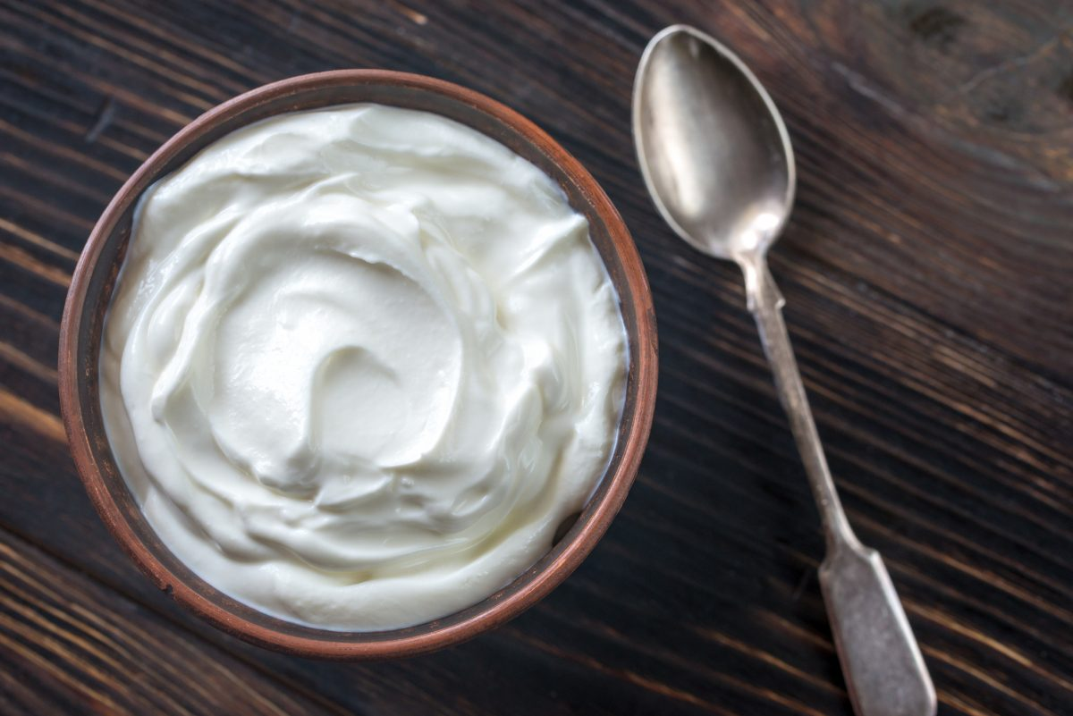 Greek yogurt probiotics neuroprotective