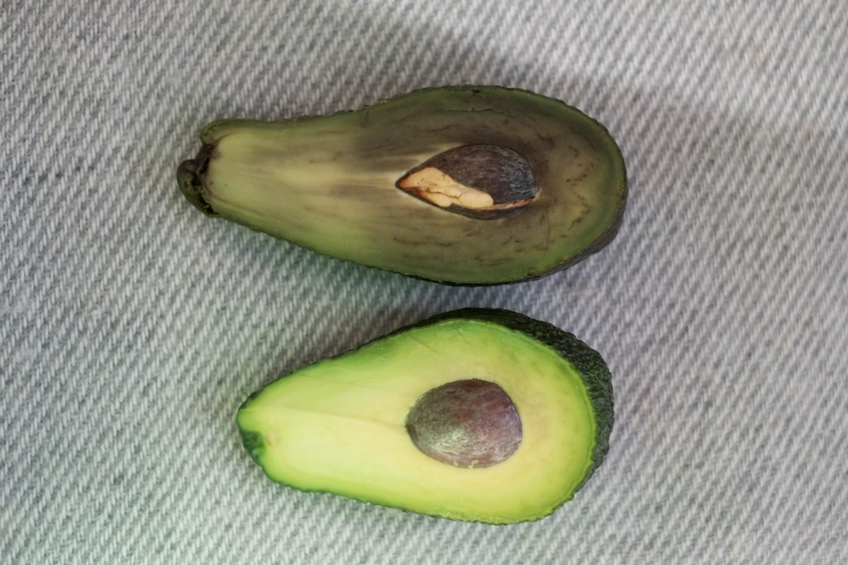 brown avocado