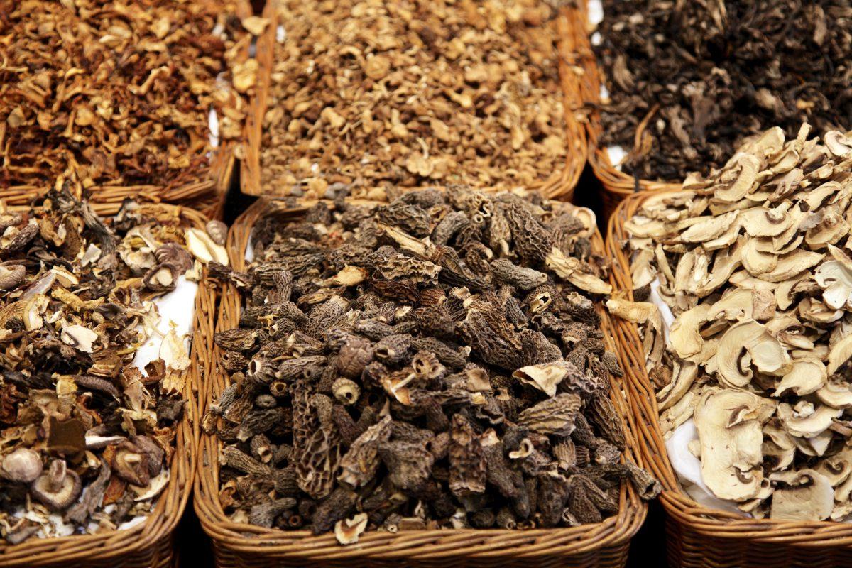 There are many mushroom varieties.