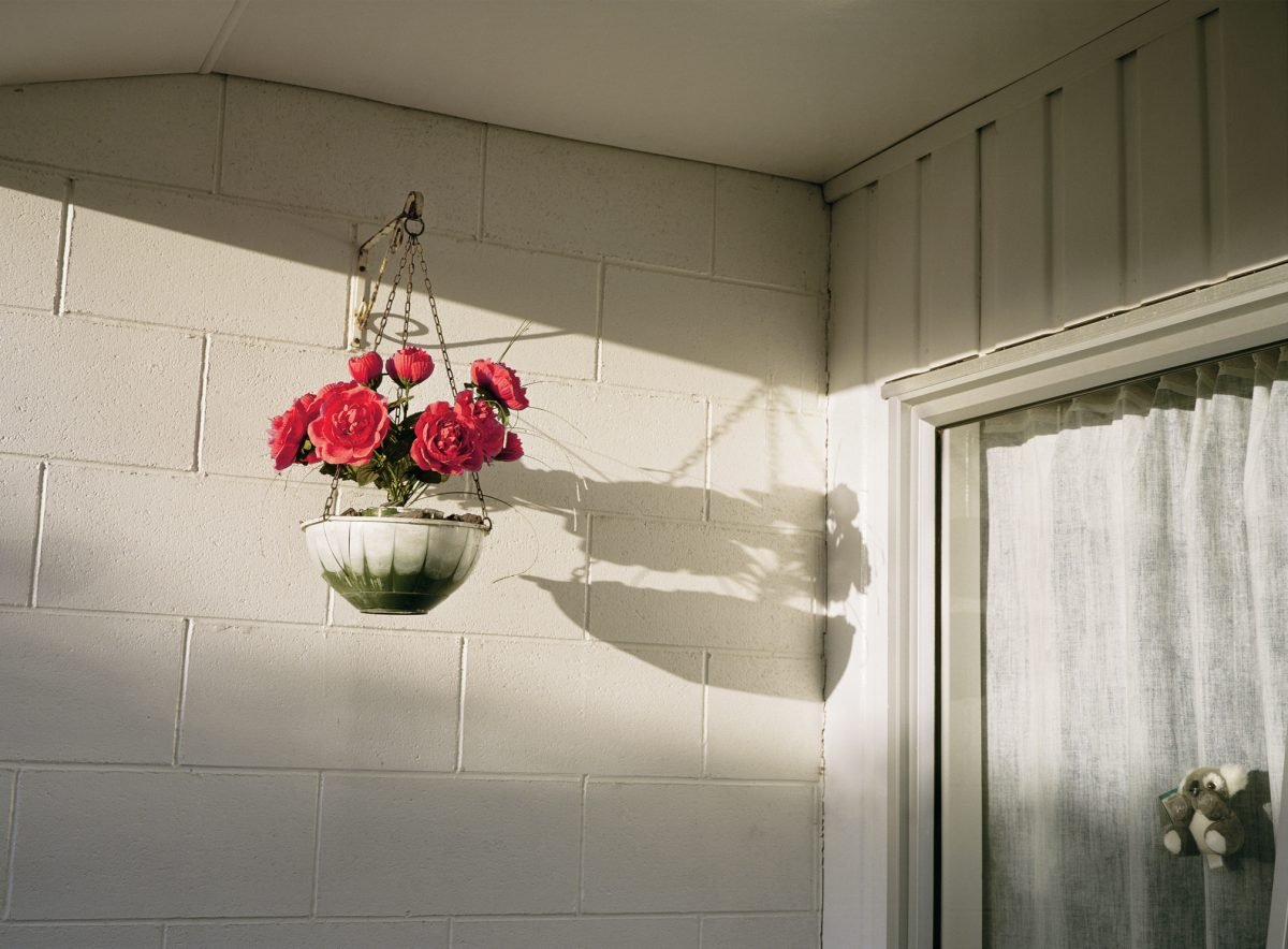 Garden Hanging Baskets Space Saving