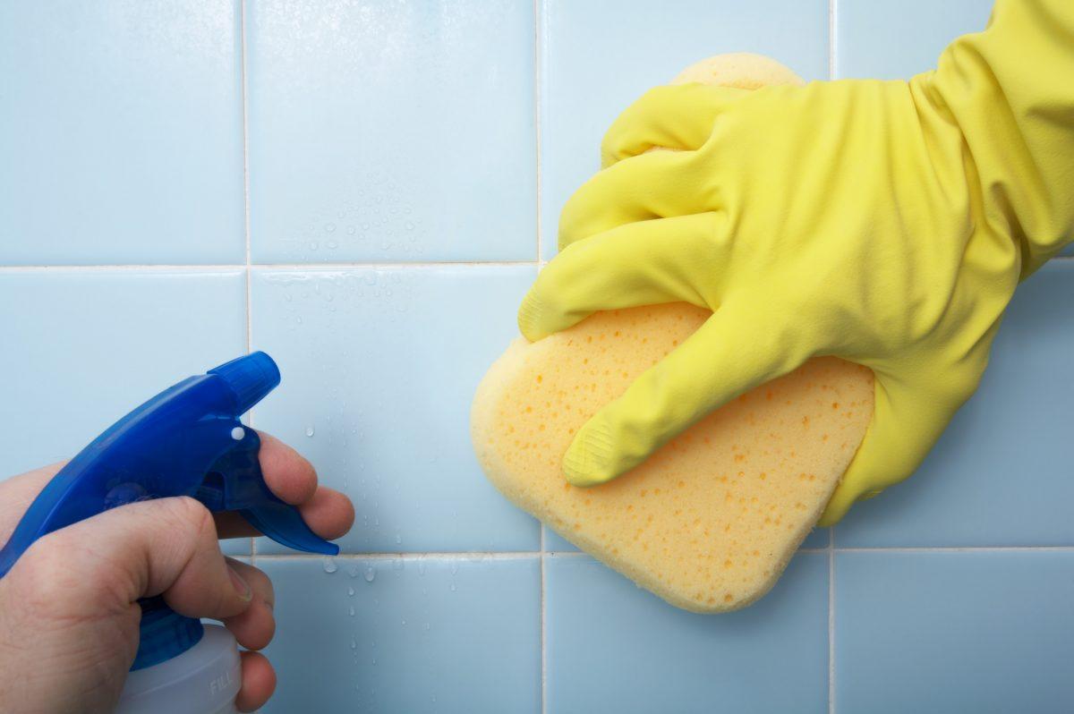 scrub tile shower mildew