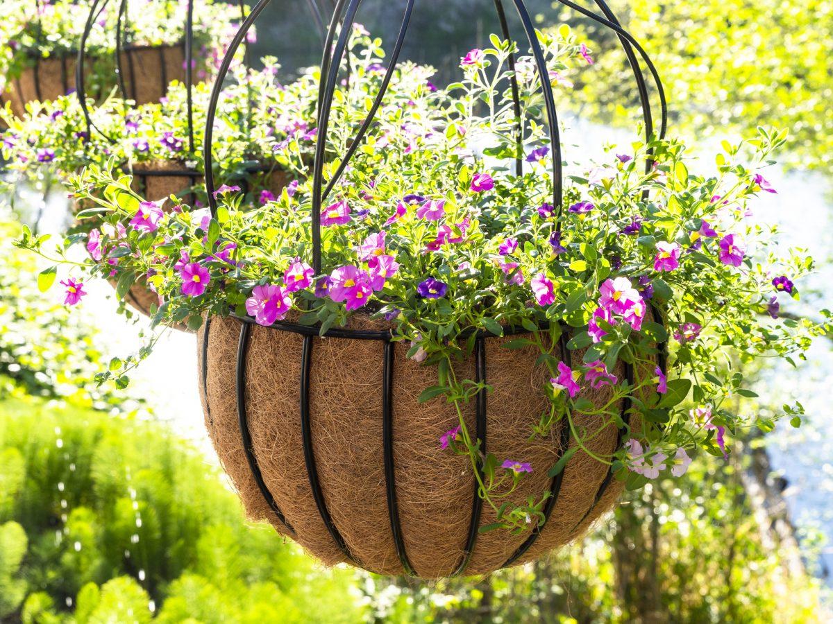 Hanging Planters Vertical Garden Flowers