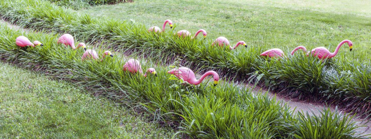 HOA rules regulations flamingos