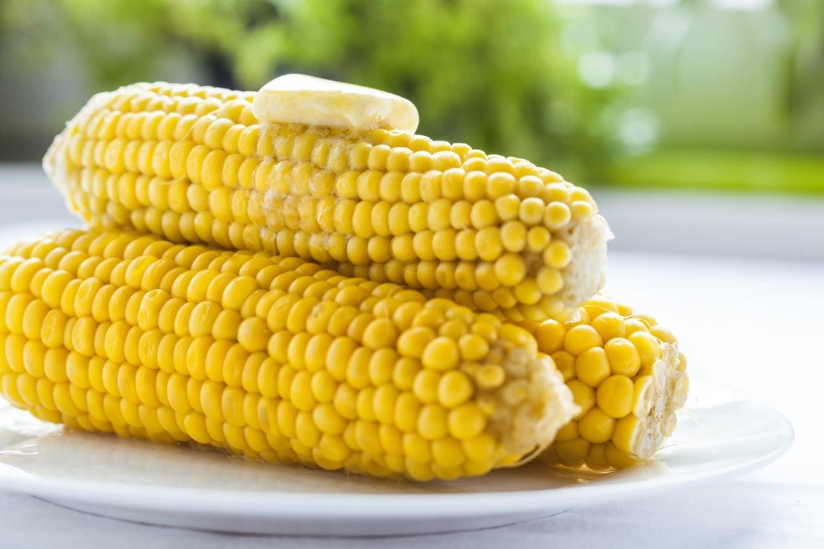 fiber rich healthy gut corn cobs