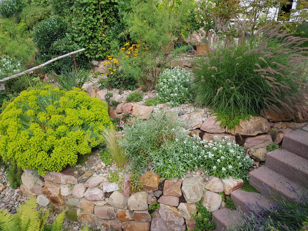 rock garden flowers bushes