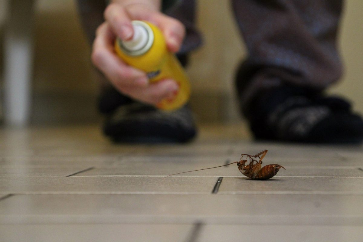 Spray insecticides with caution