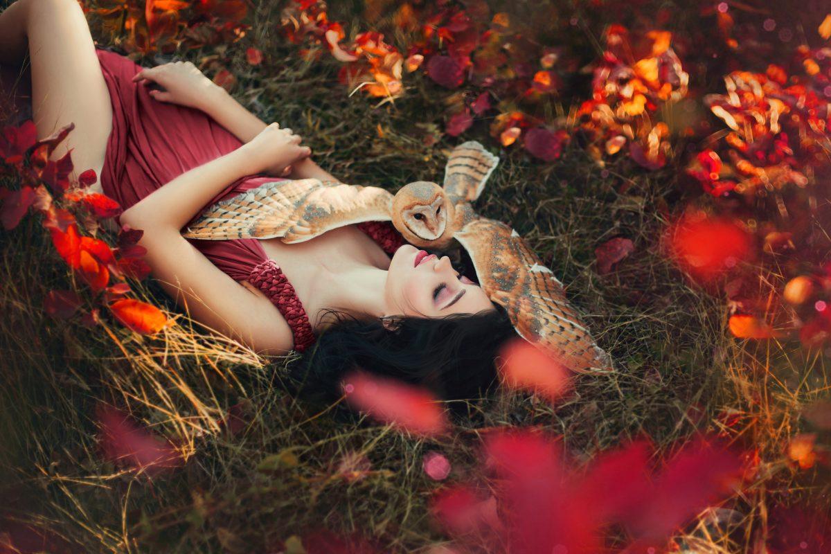 dreams good bad beautiful fantastical