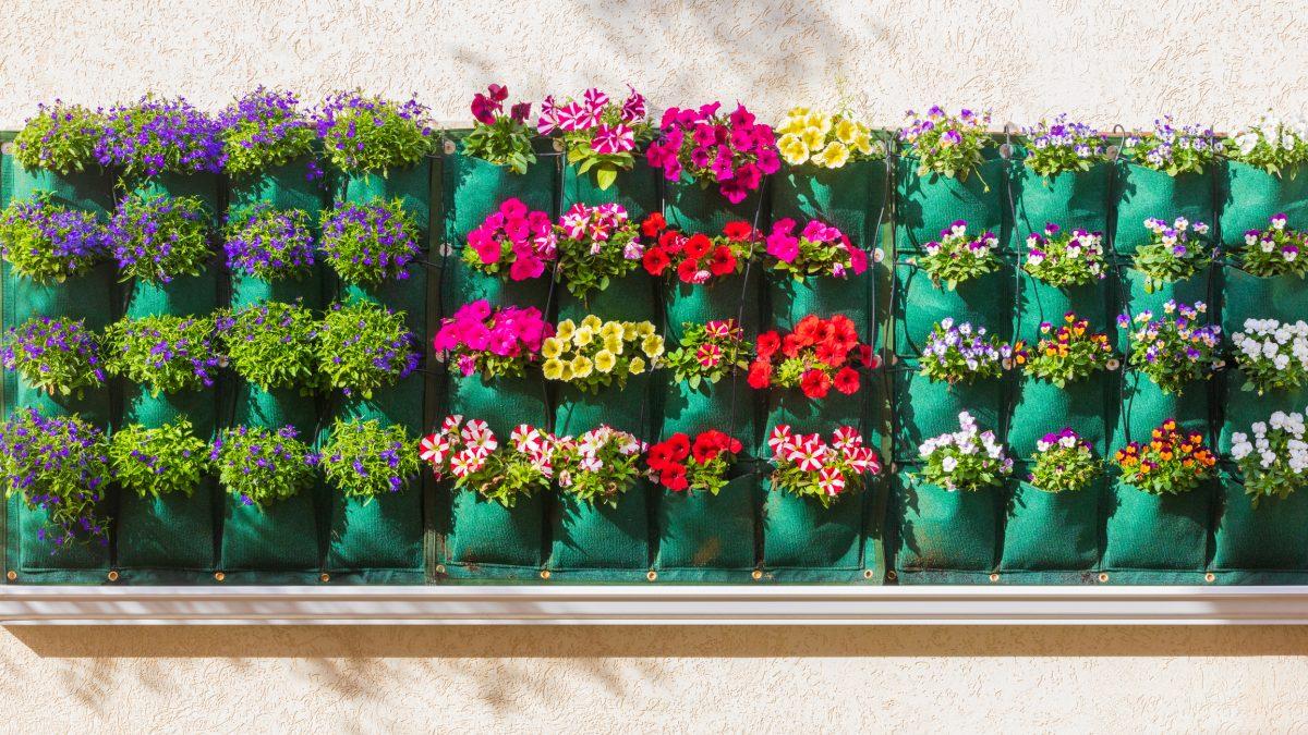 organizer pockets vertical garden flowers