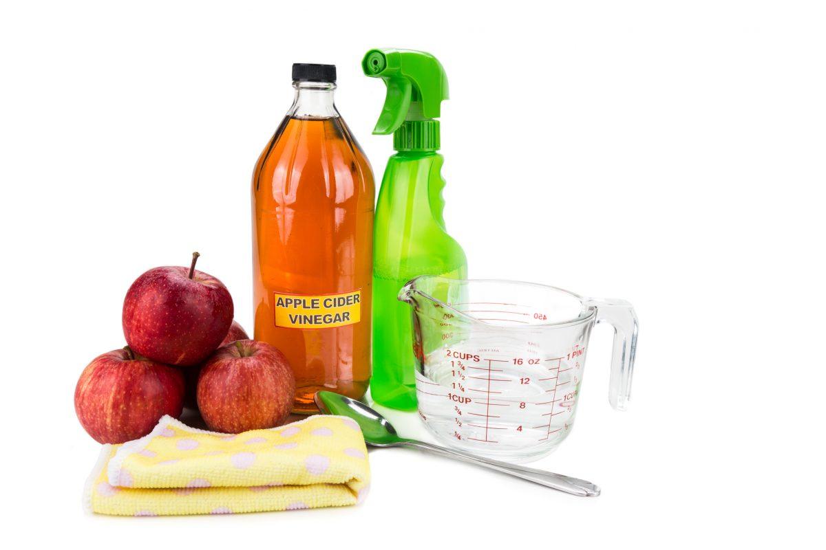 bug deterrent spray cider vinegar