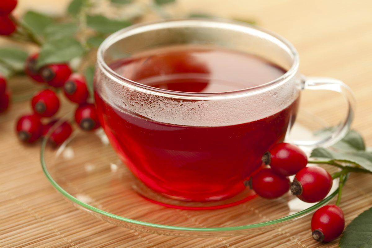 cup of rosehip tea