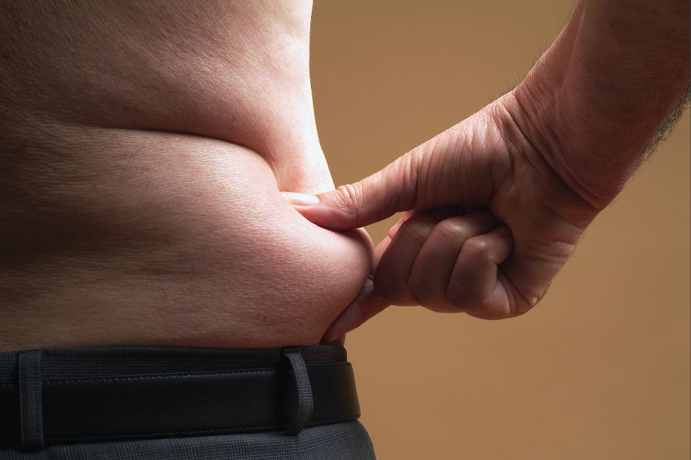abdominal fat and rosehip