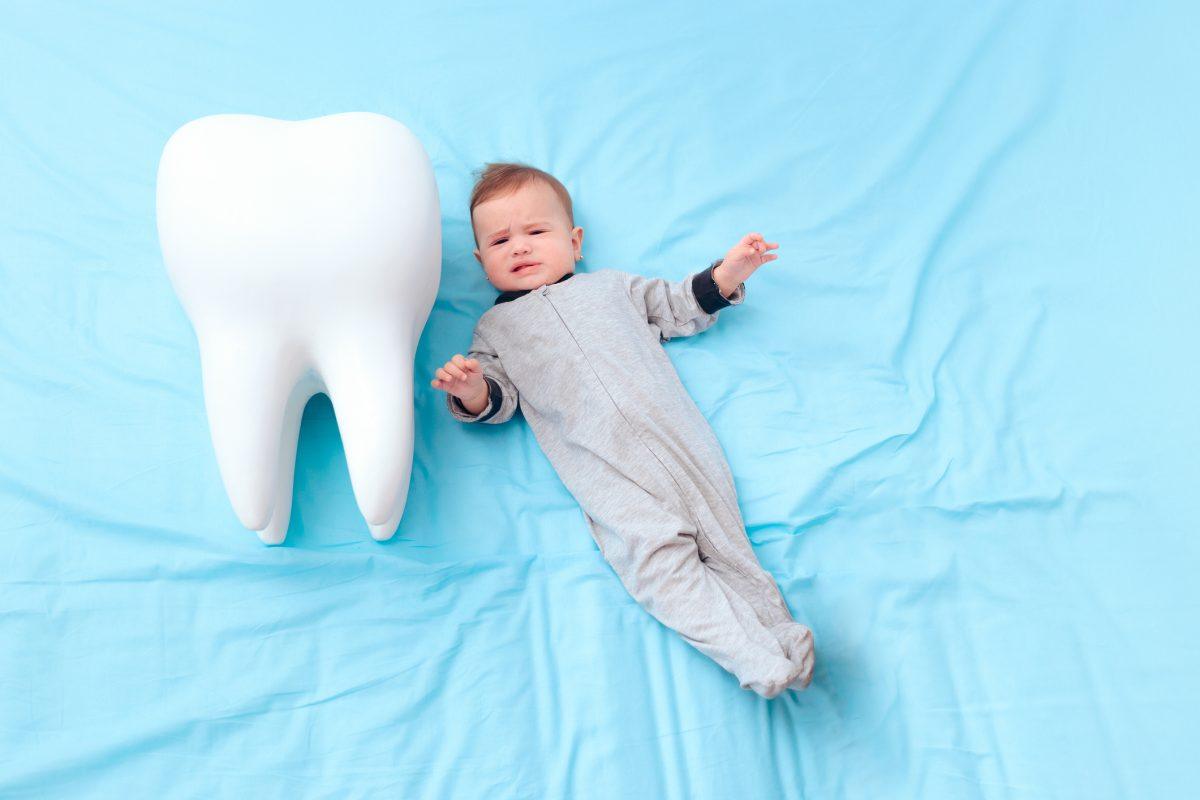 Baby with model of tooth