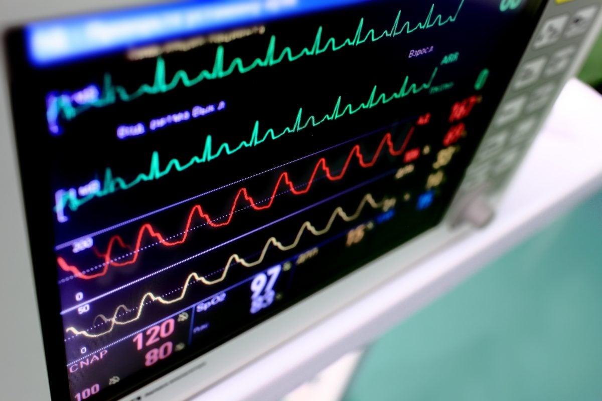 heart monitor heartrate