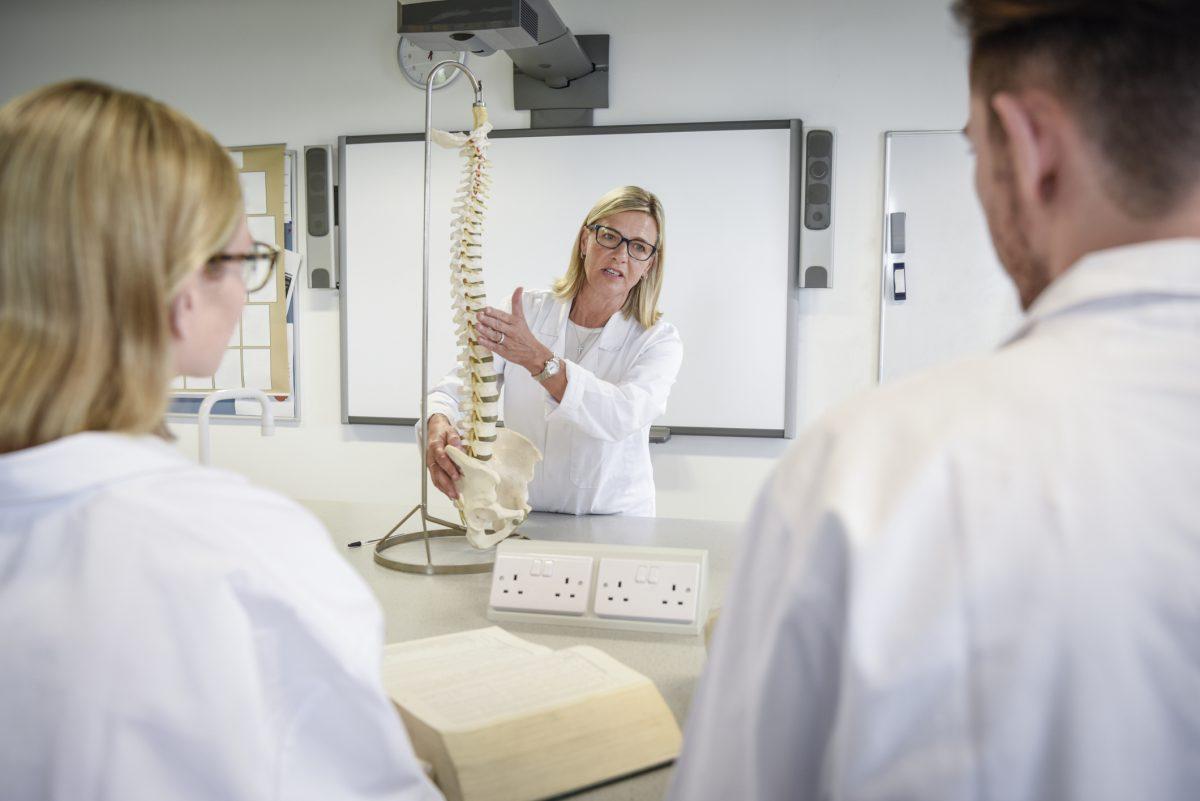 teacher spine model plane