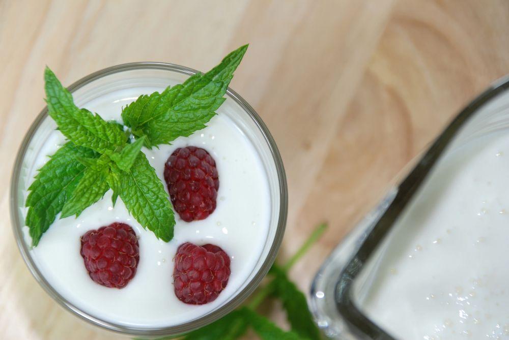 probiotics for candida diet