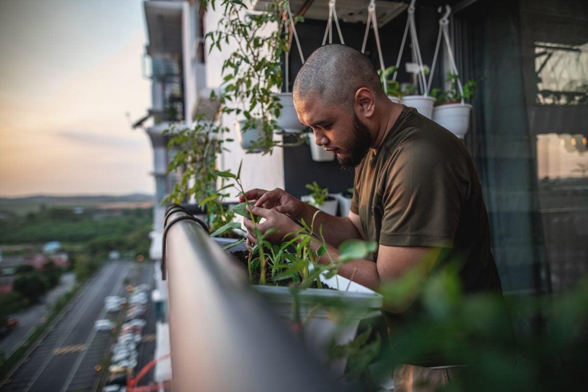 cortisol levels stress relief gardening