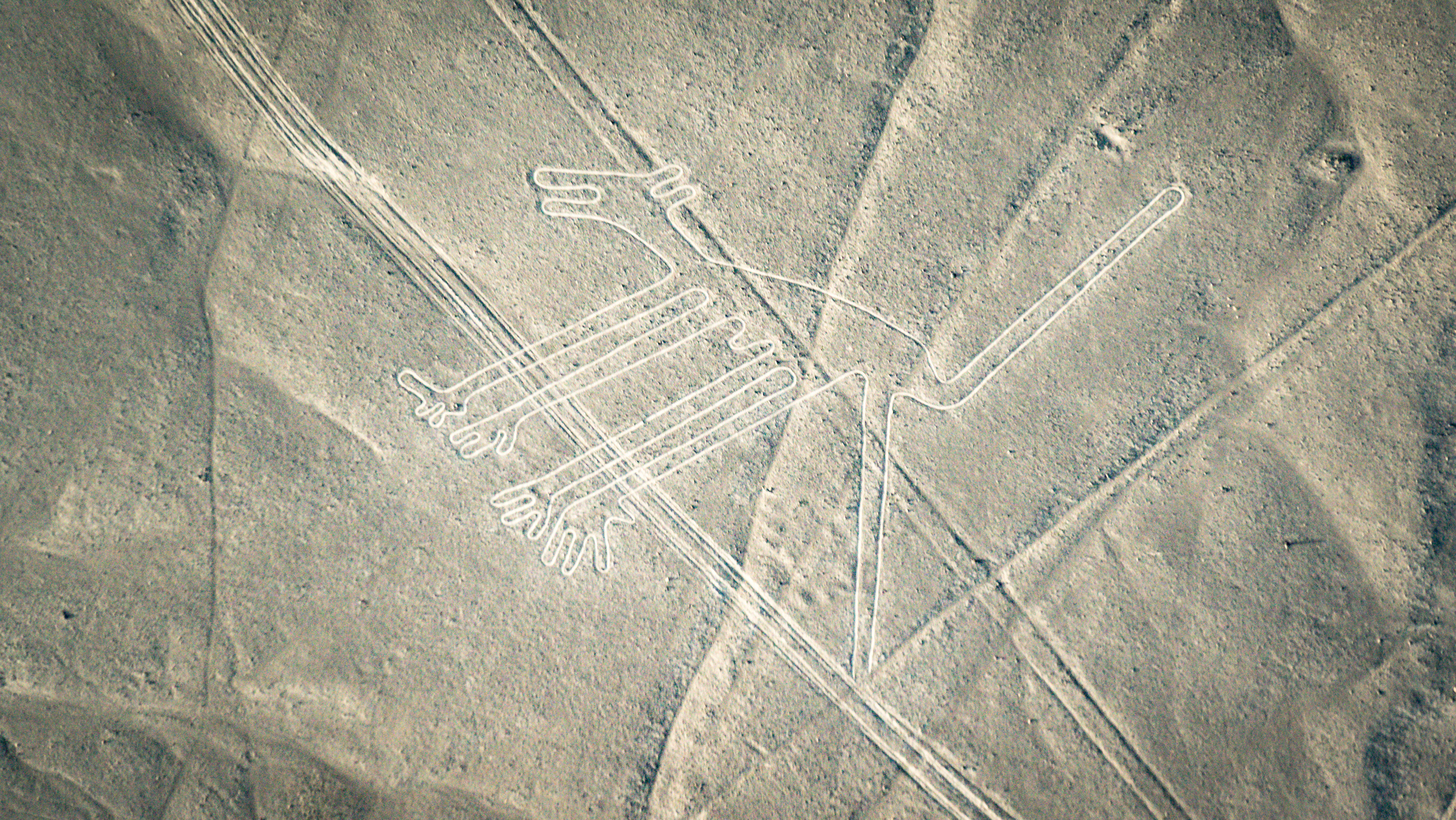 Dog figure as seen in the Nasca Lines, Nazca, Peru