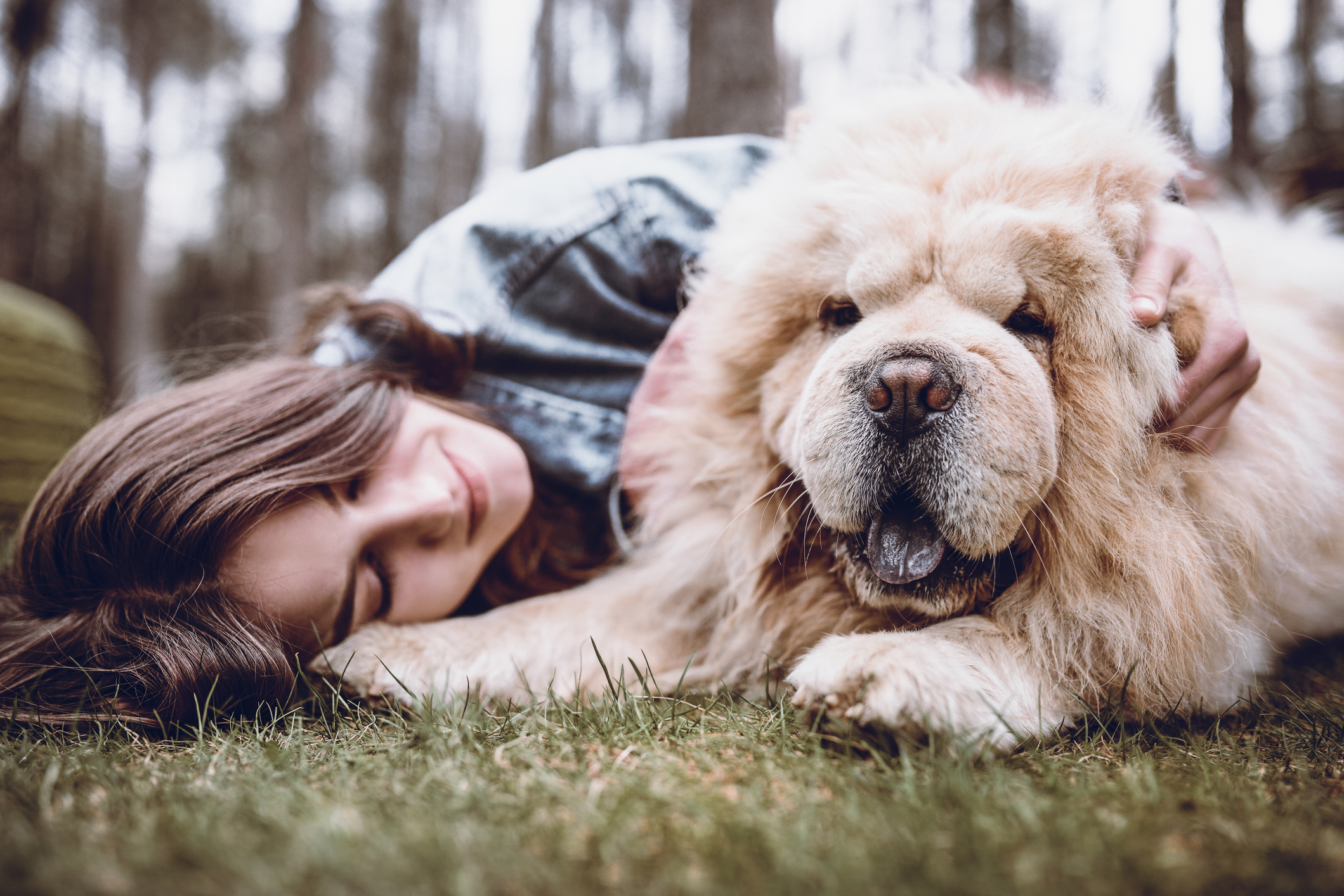Young Woman Hugging her Chow Chow Dog in the Park