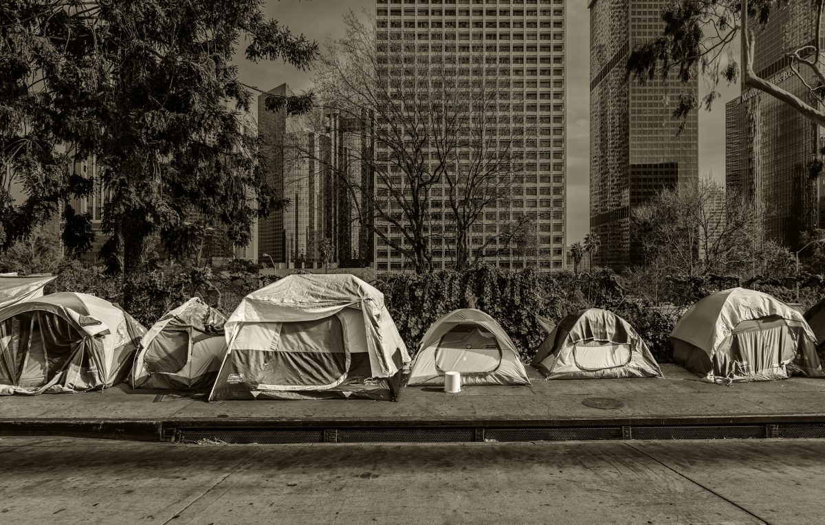 homeless people Bartonella