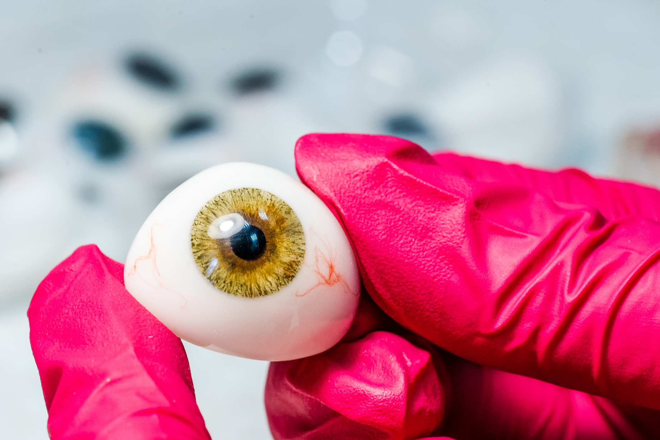 Ophthalmologist or surgeon holds an eye, eyeball prosthesis in hands. Concept photo for ocular prosthesis. Surgical operations on eyes. Closeup.