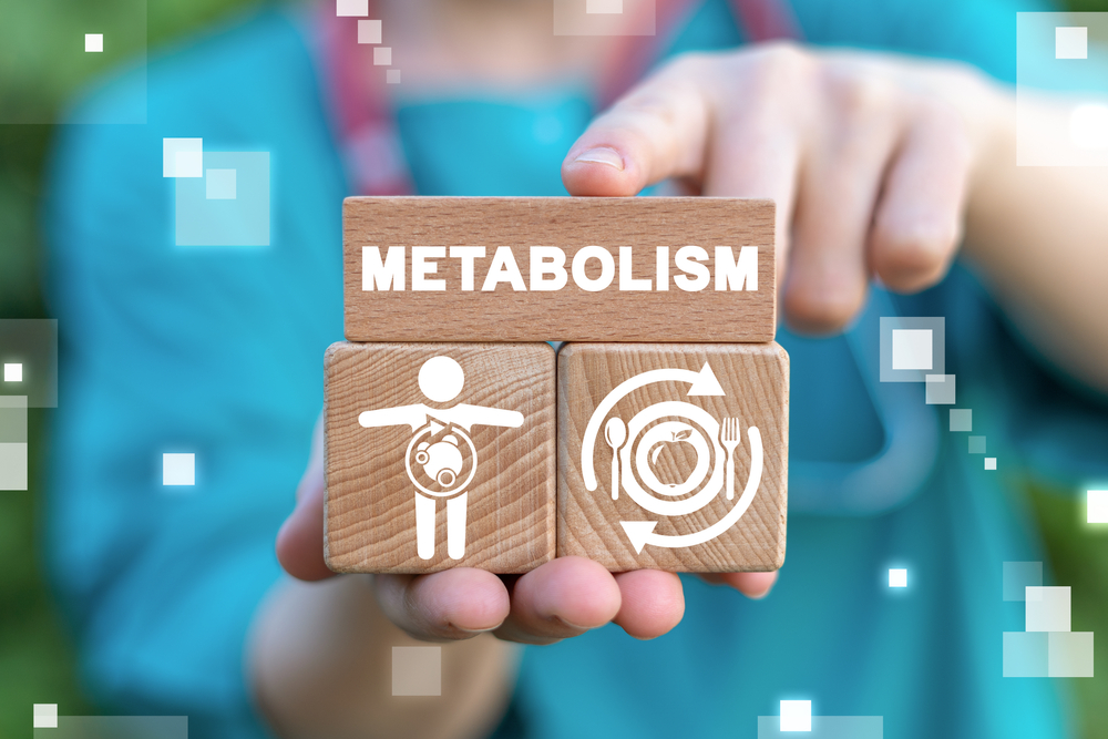 Understanding What Metabolism Really Means