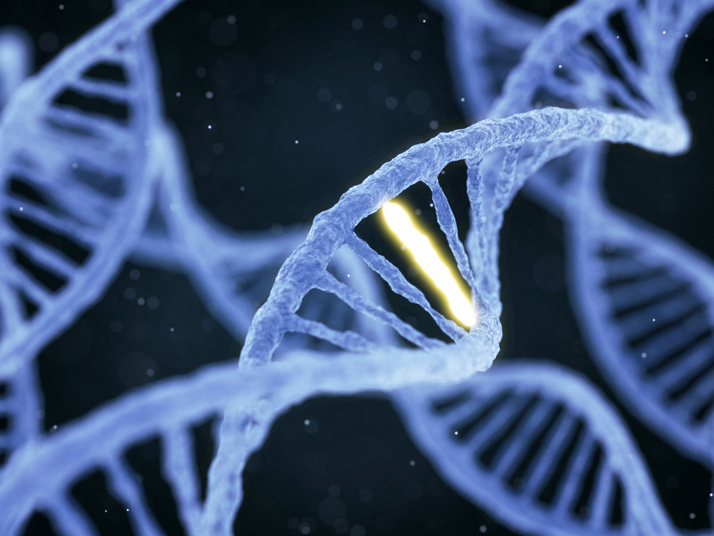 digital image of a DNA strand with one highlighted section