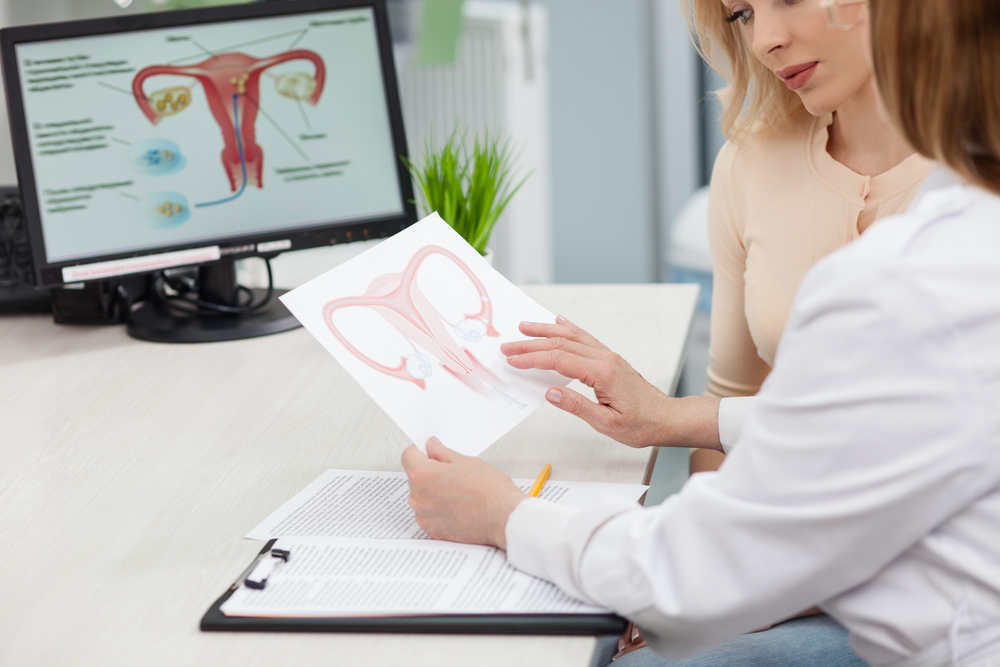 doctor showing female patient reproductive system