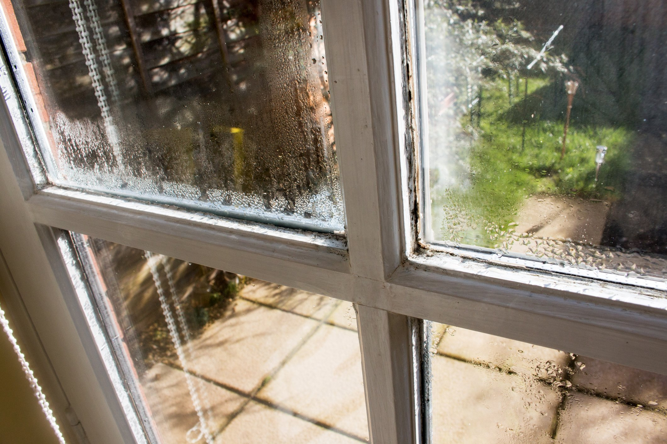 wet window with water drops. damp is attacking the old window. damaged window needs of replacement, with rotting wood and peeling paint