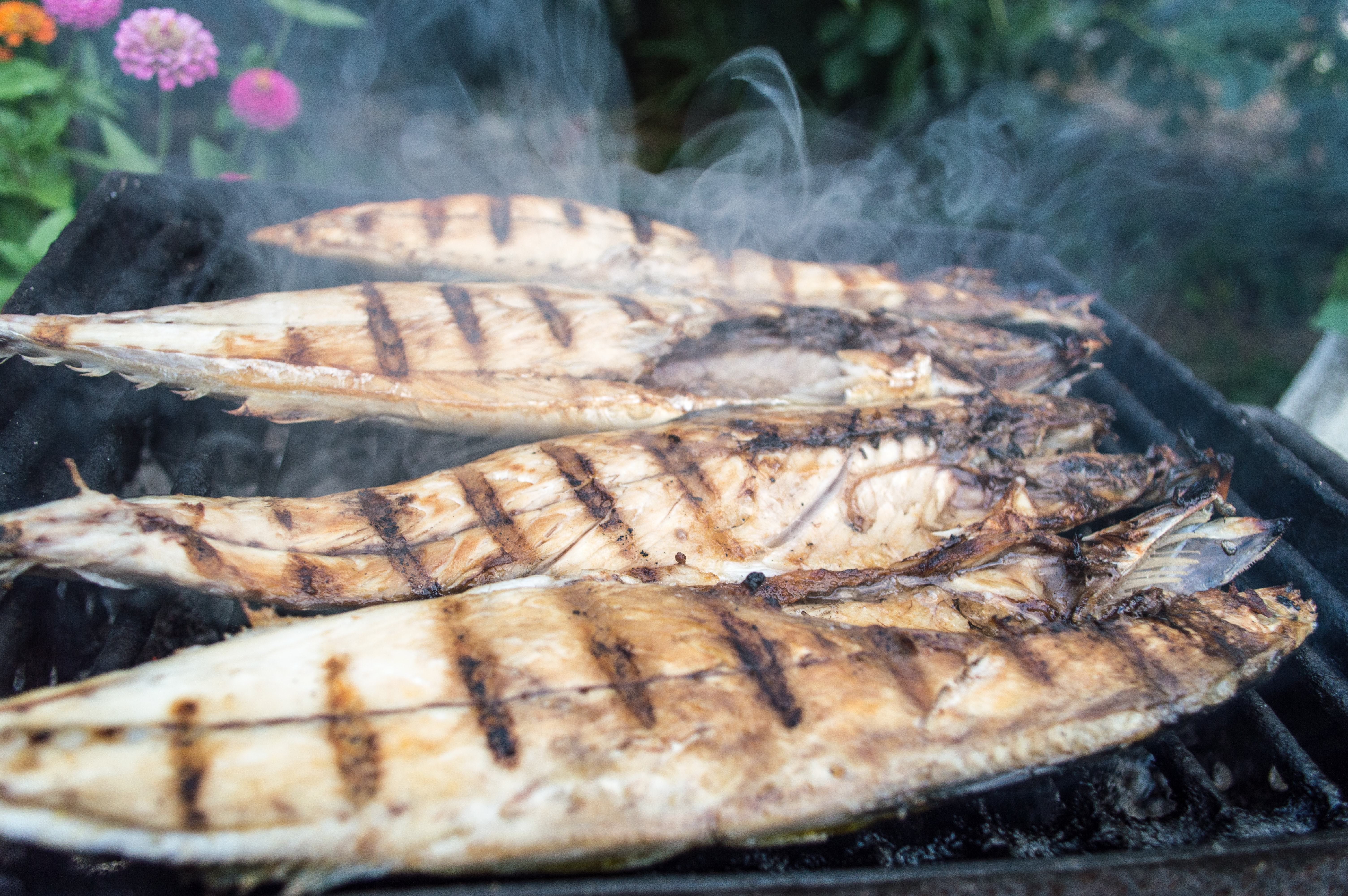 Multiple barbecued fish sizzling on a grill