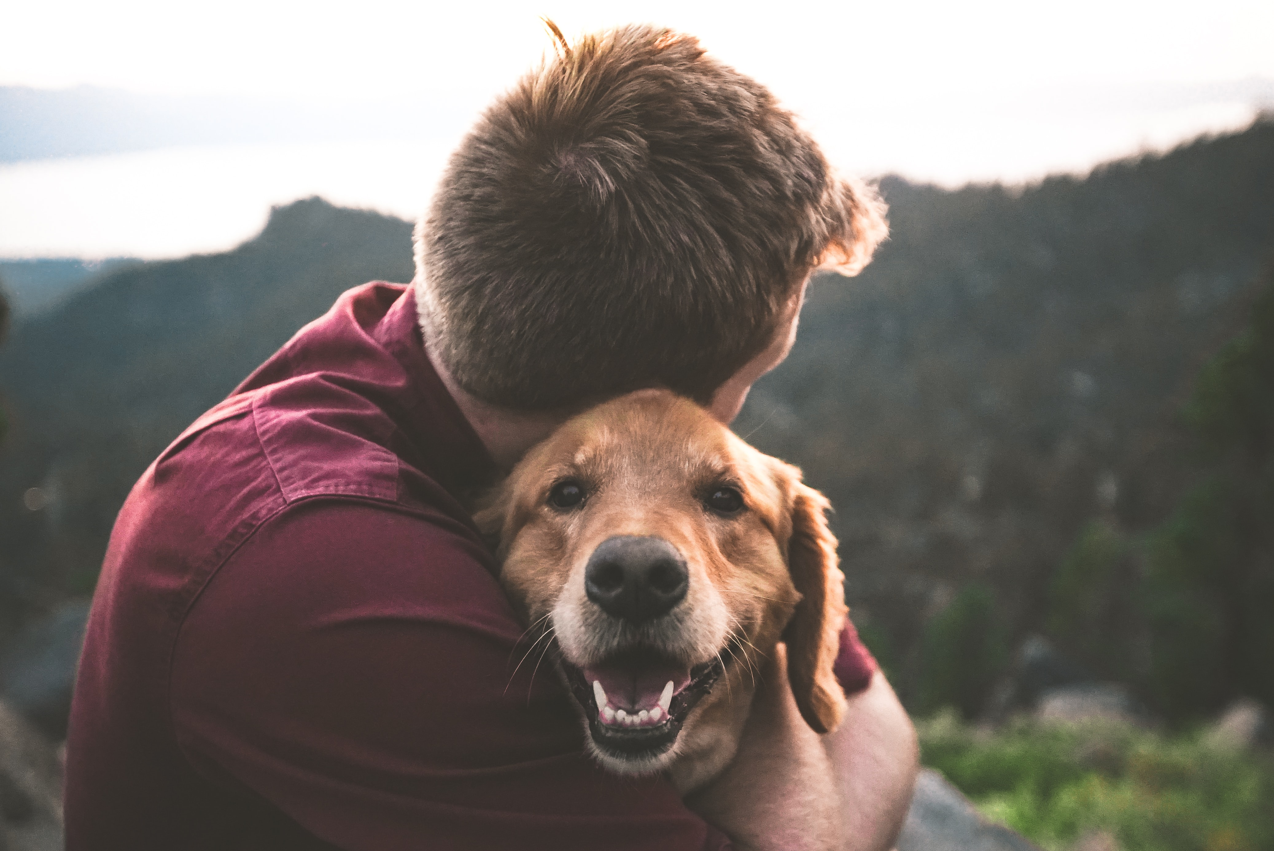An owner hugging a dog and the dog has their eyes wide and mouth open.