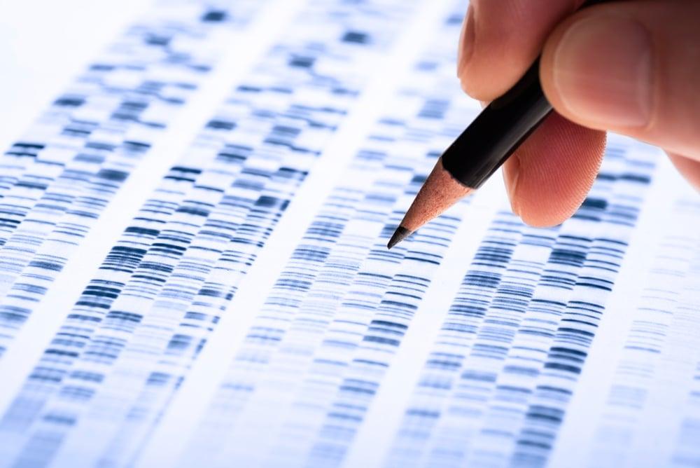 a professional examining DNA result sheets