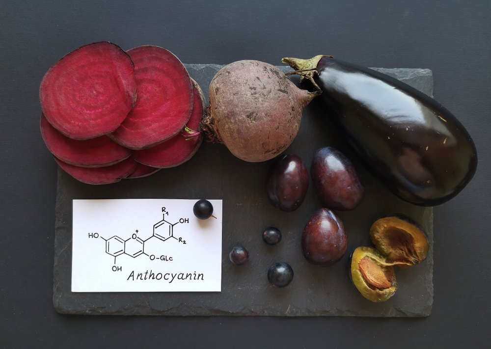 concept of anthocyanin and foods that contain it