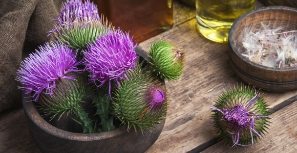 Possible Adverse Side Effects of Milk Thistle