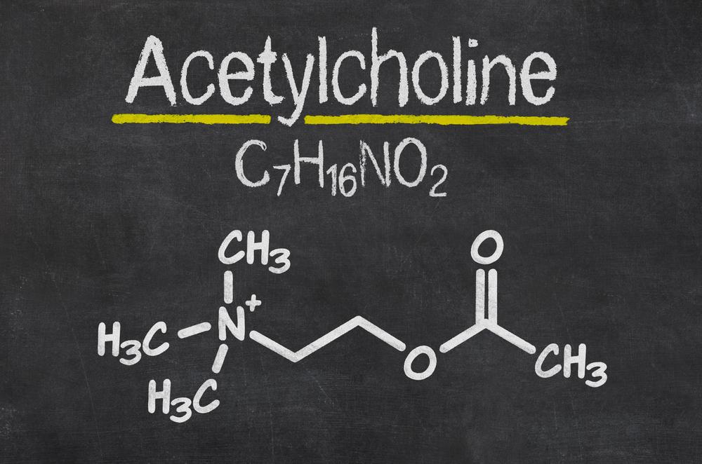 Acetylcholine chemical symbol