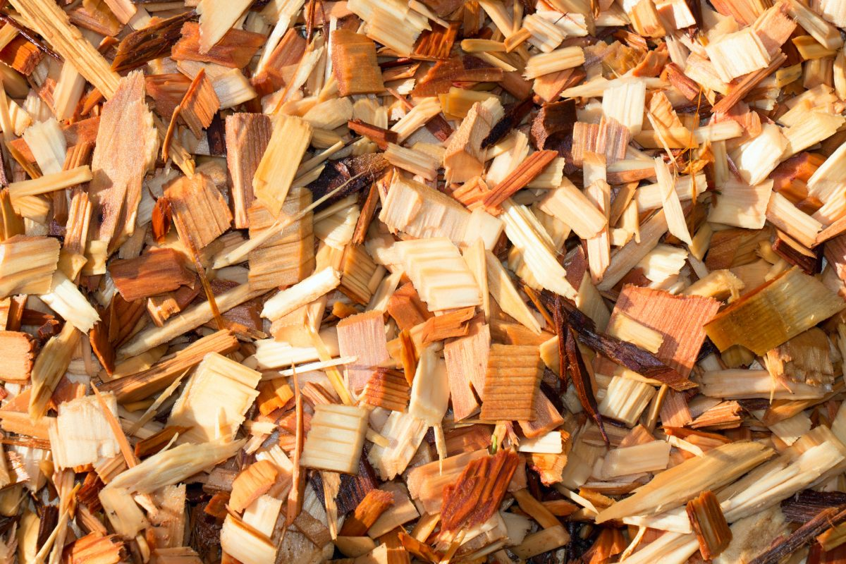 Cedar chips to prevent fleas