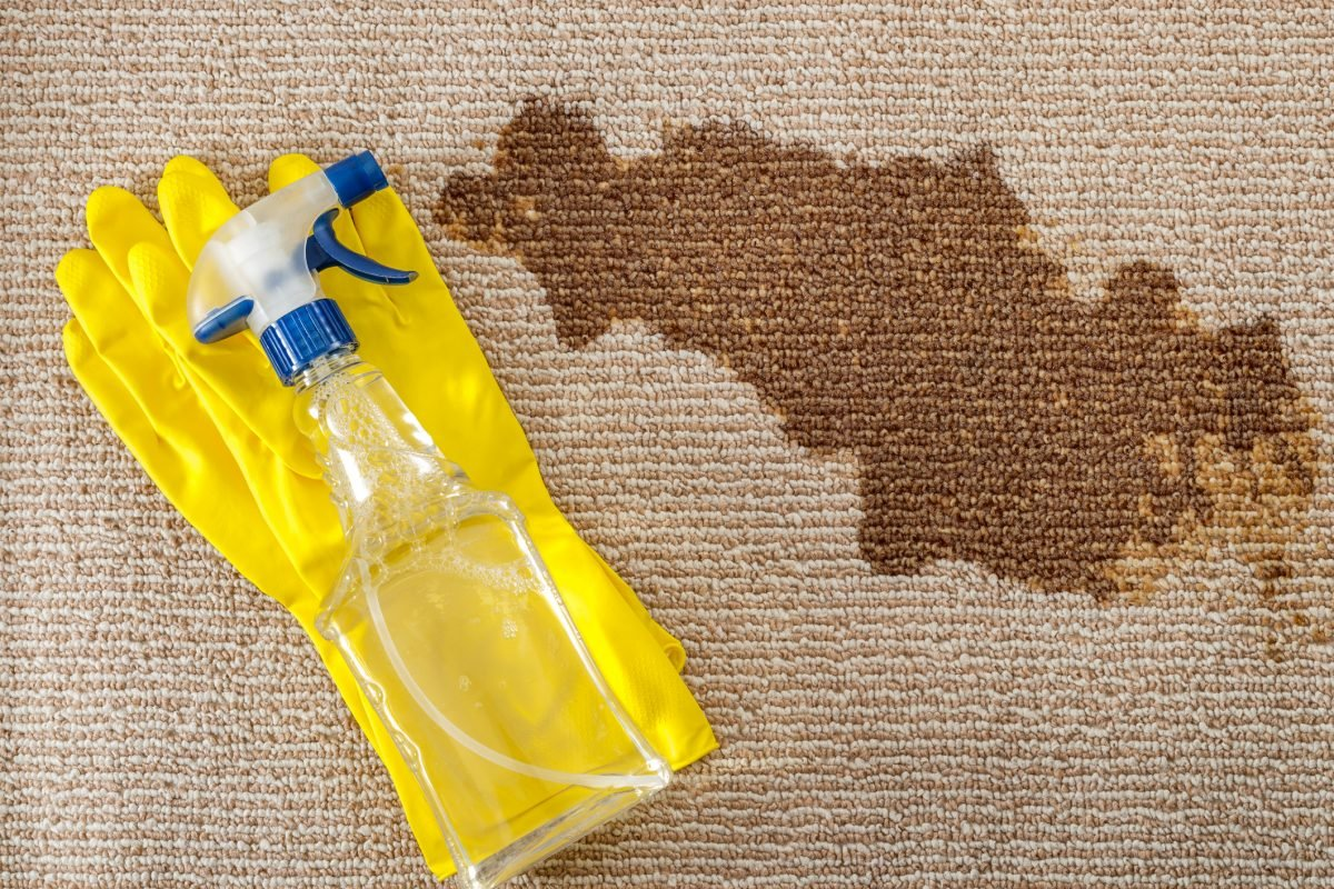 A spray bottle of water next to a dark stain on carpet