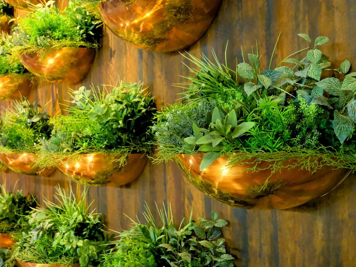 Copper wall planters with green shrubs inside