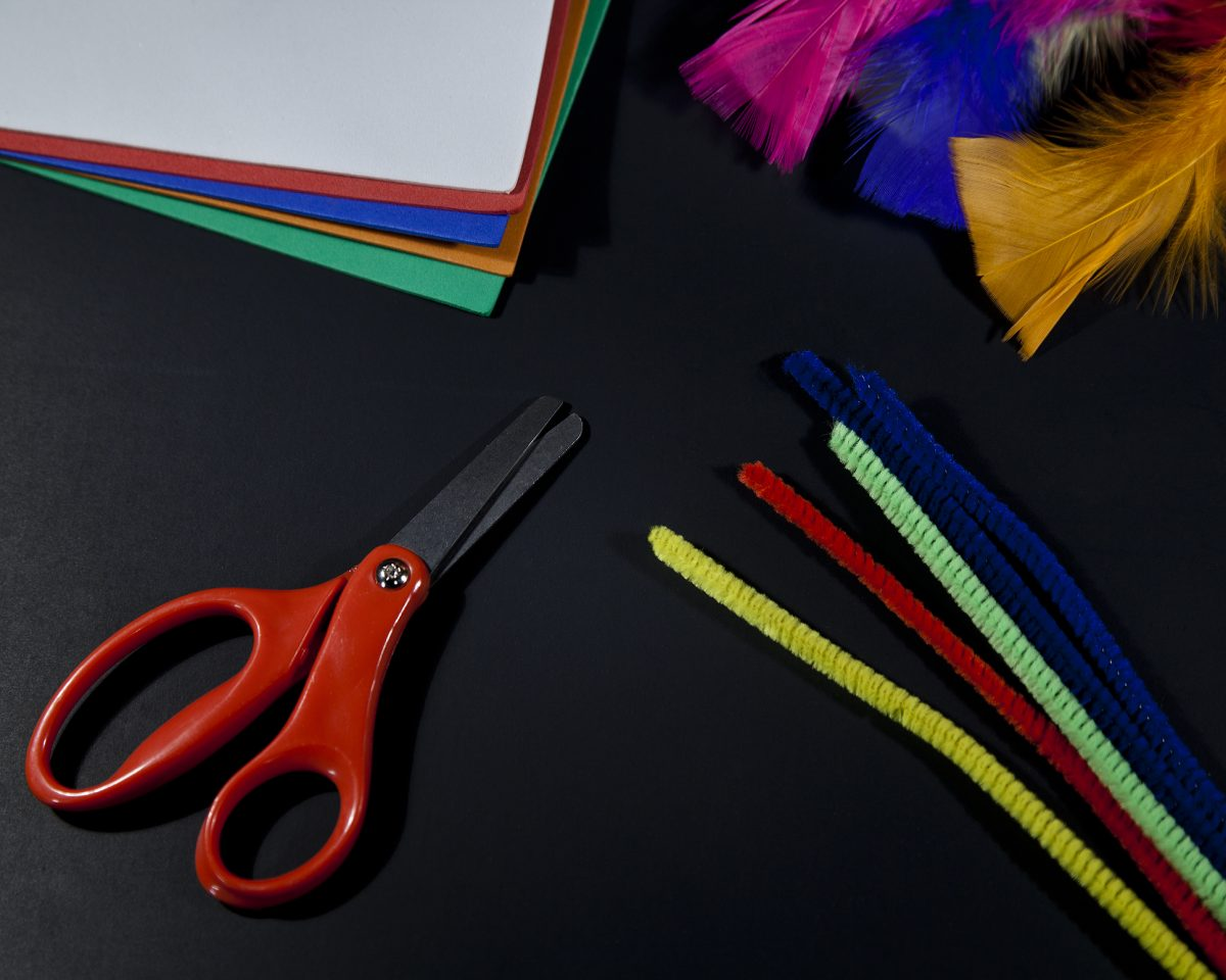 Tissue Paper Flowers supplies scissors pipe cleaners